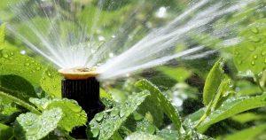 אביזרי השקיה